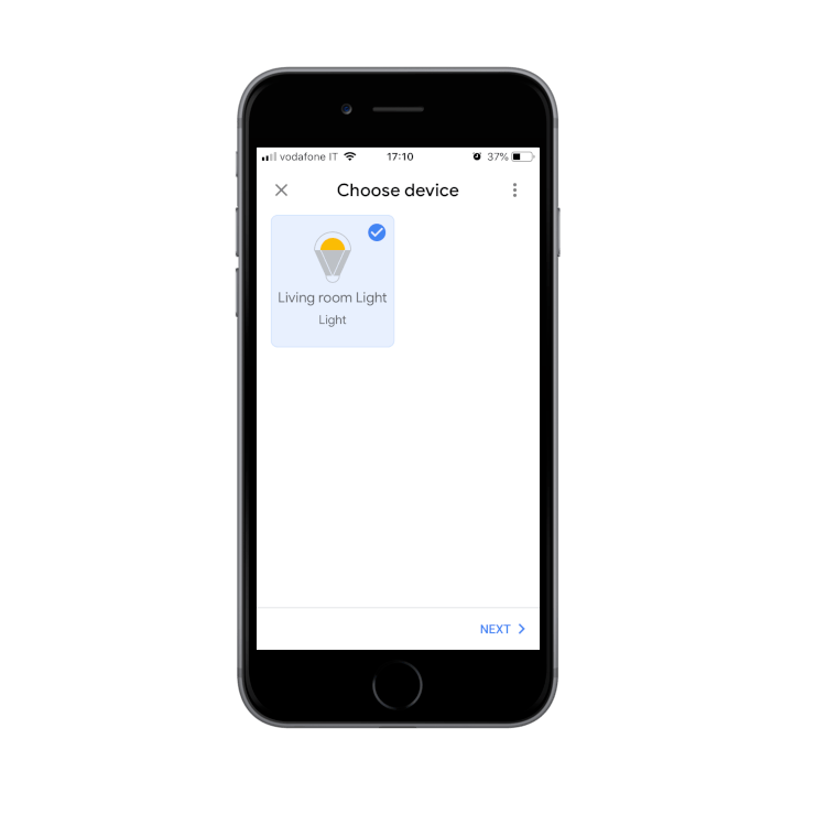 Discovered devices from the search made from the Voice assistant App Google Home